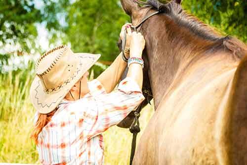 Frau legt dem Pferd das Knotenhalfter an