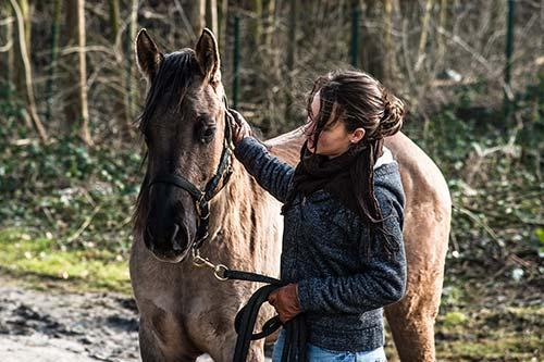 Kursteilnehmerin im Coachingprozess mit dem Pferd